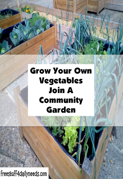 Grow Your Own Vegetables Join A Community Garden