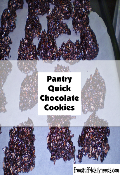 Pantry Quick Chocolate Cookies