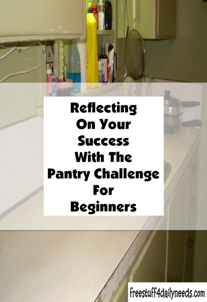 Reflecting On Your Success With The Pantry Challenge For Beginners