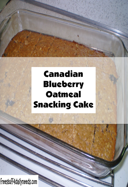 Canadian Blueberry Oatmeal Snacking Cake