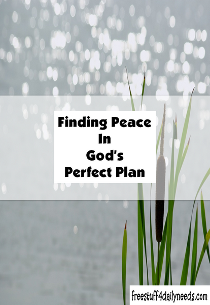 Finding Peace In Gods Perfect Plan