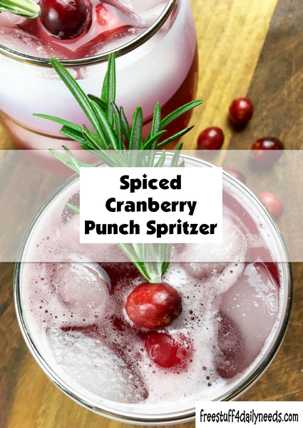Spiced Cranberry Punch Spritzer