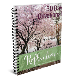 30 Day Reflection Devotional Review